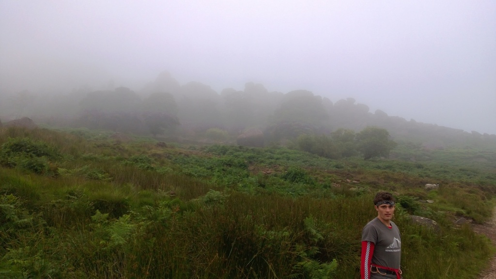 The Roaches in the mist